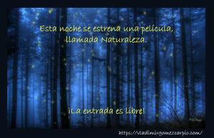 12-naturaleza